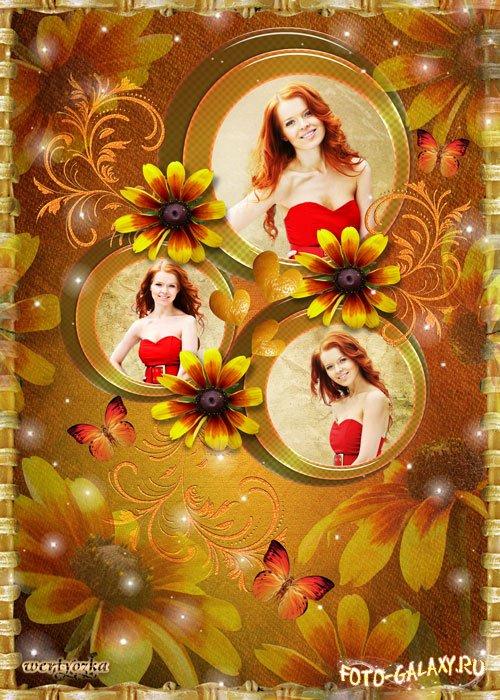Рамка для фотошопа осенние цветы