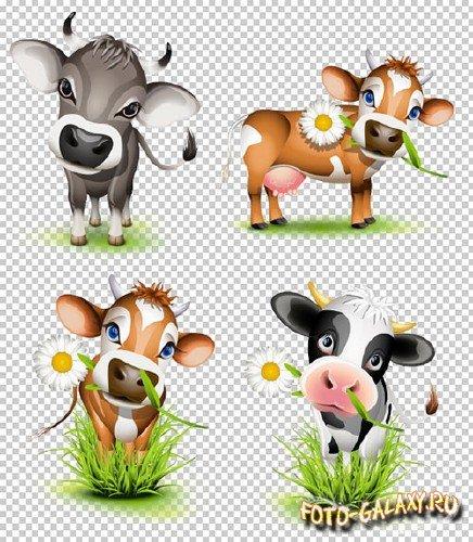 Картинки корова с теленком 3