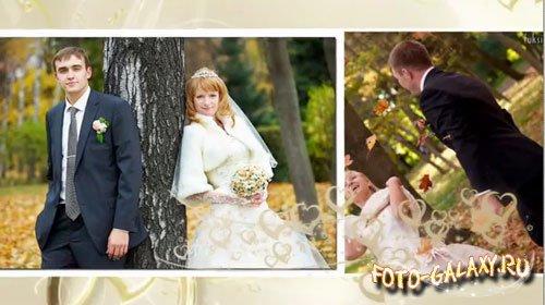 Свадебный футаж для прошоу скачать фото 161-396