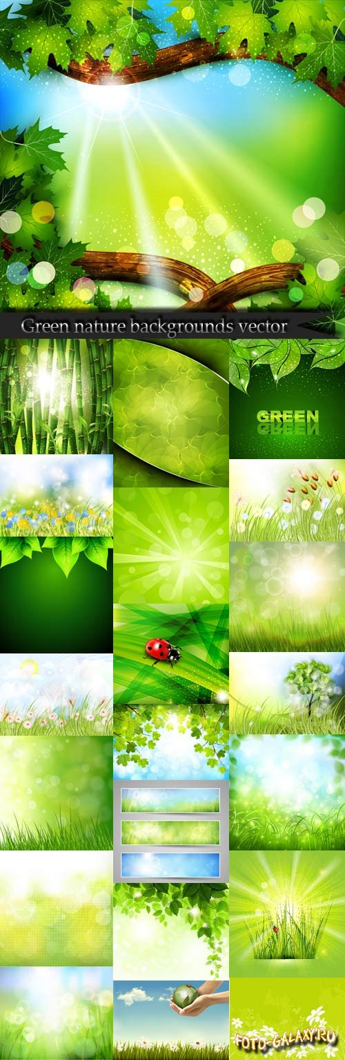 Green nature backgrounds vector