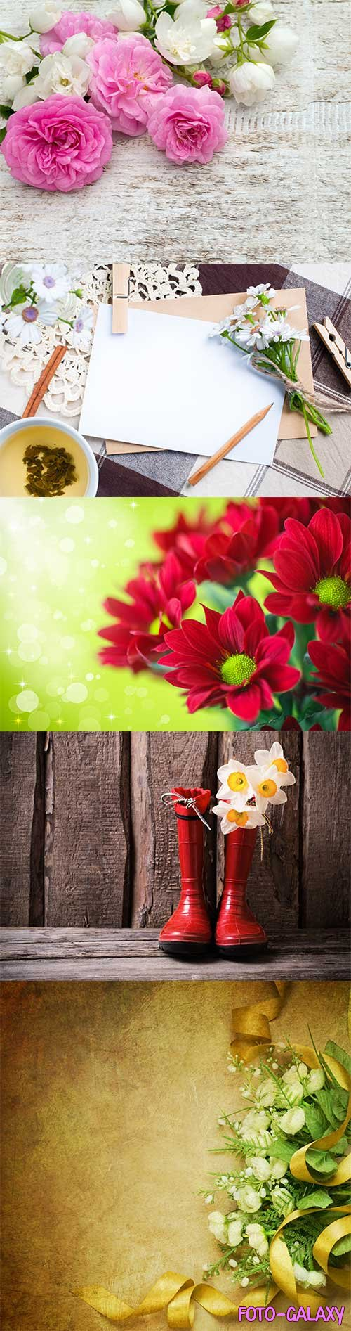 Background cards with flowers