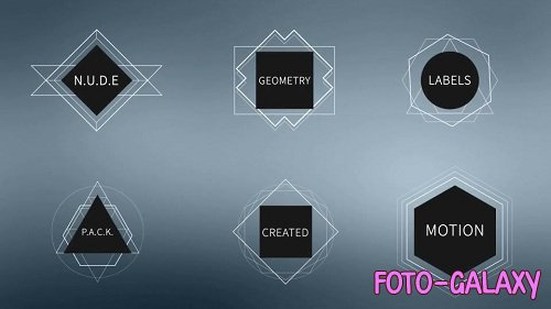 N.U.D.E Labels 20377 - After Effects Templates