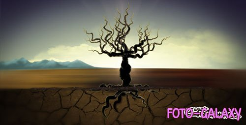 Tree Of Life 7460141 - Project for After Effects (Videohive)