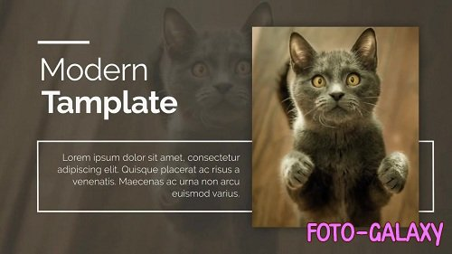 Promo - After Effects Templates
