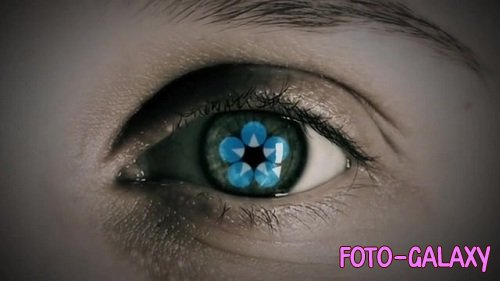 Eye Logo 82271006 - After Effects Templates
