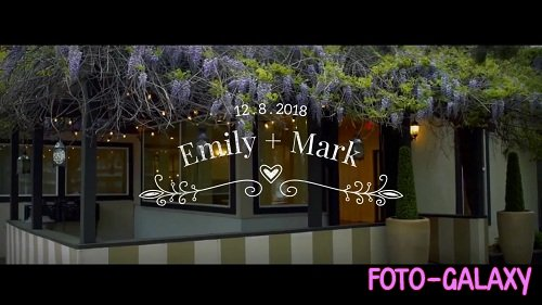 14 Wedding Titles 53534 - After Effects Templates