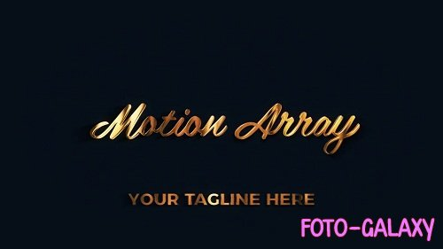 Gold And Leather Luxury Logo 59032 - After Effects Templates