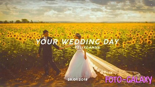Wedding Day 57606 - After Effects Templates