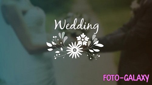 7 Wedding Ornaments With Flowers 94557 - After Effects Templates