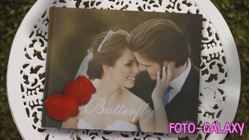 Проект ProShow Producer - Album Wedding and Butterfly