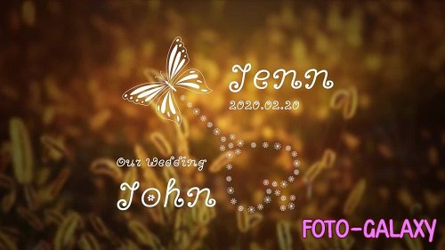 Natural Wedding Titles Pack 149692 - After Effects Templates