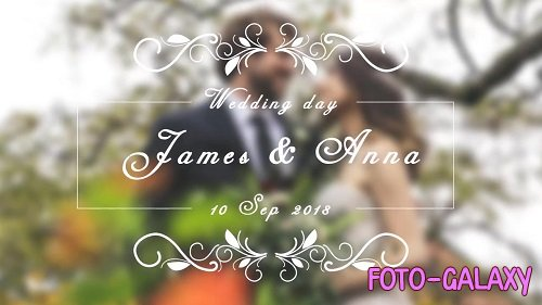 Wedding Titles 140195 - After Effects Templates