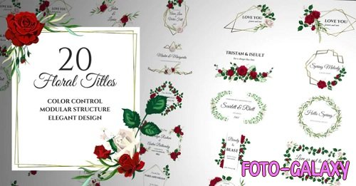Floral Romantic Titles 196489 - After Effects Templates