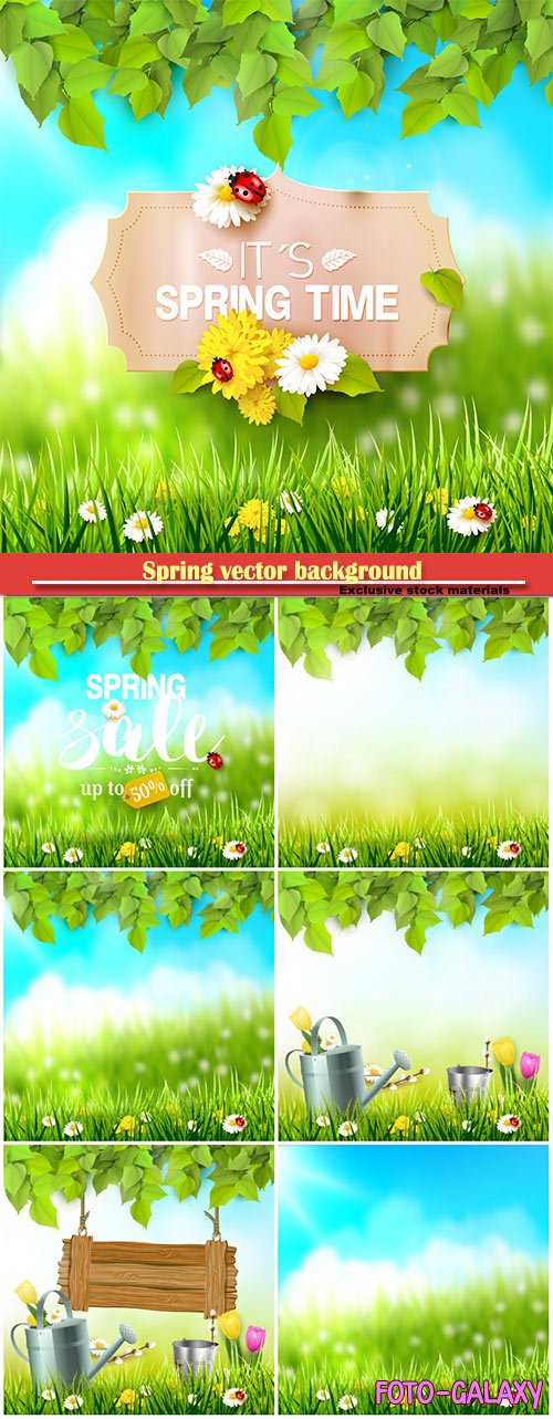 Spring vector background with green grass and flowers