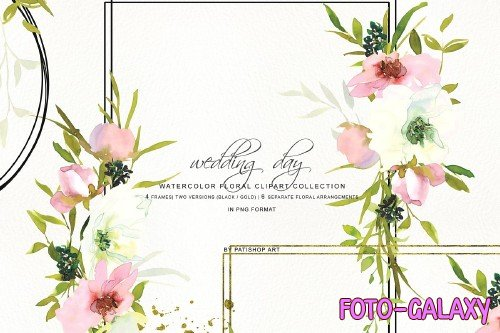 Watercolor Blush & White Rose Frames - 3723347