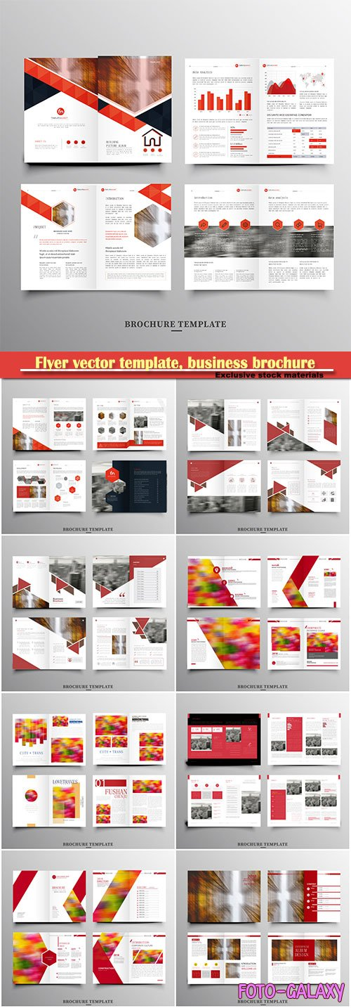 Flyer vector template, business brochure, magazine cover # 18
