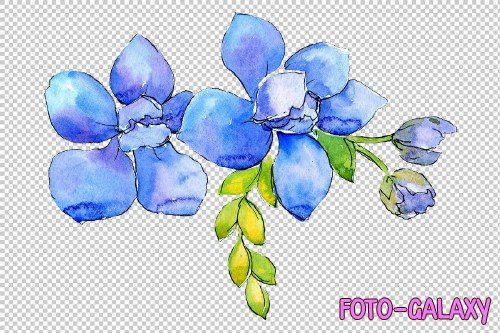 Flower composition PNG watercolor - 3082931