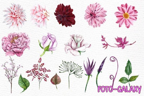 Watercolor flowers clipart - 1160467