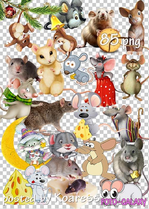 Мыши и крысы png - Mice and rats png