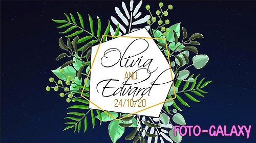 Tropical Wedding Labels 262643 - After Effects Templates