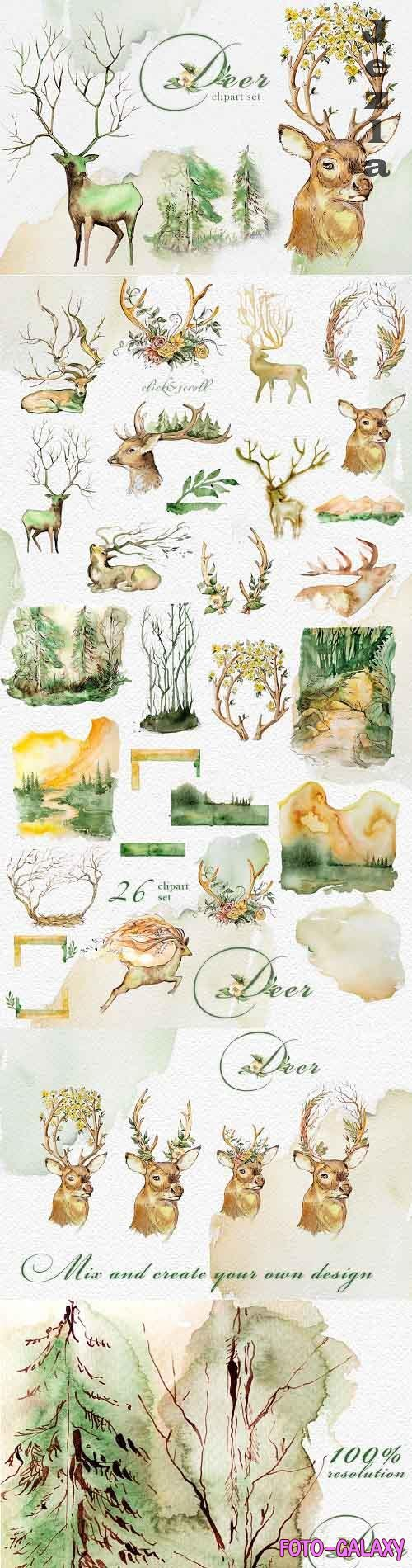 Watercolor Deer Clipart Set - 4328234