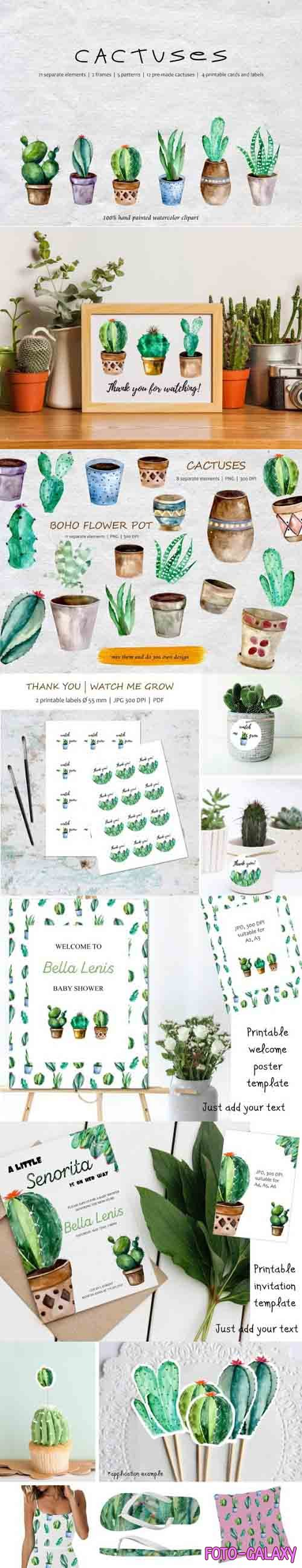 Watercolor Cacti, Watercolor Succulent Graphic