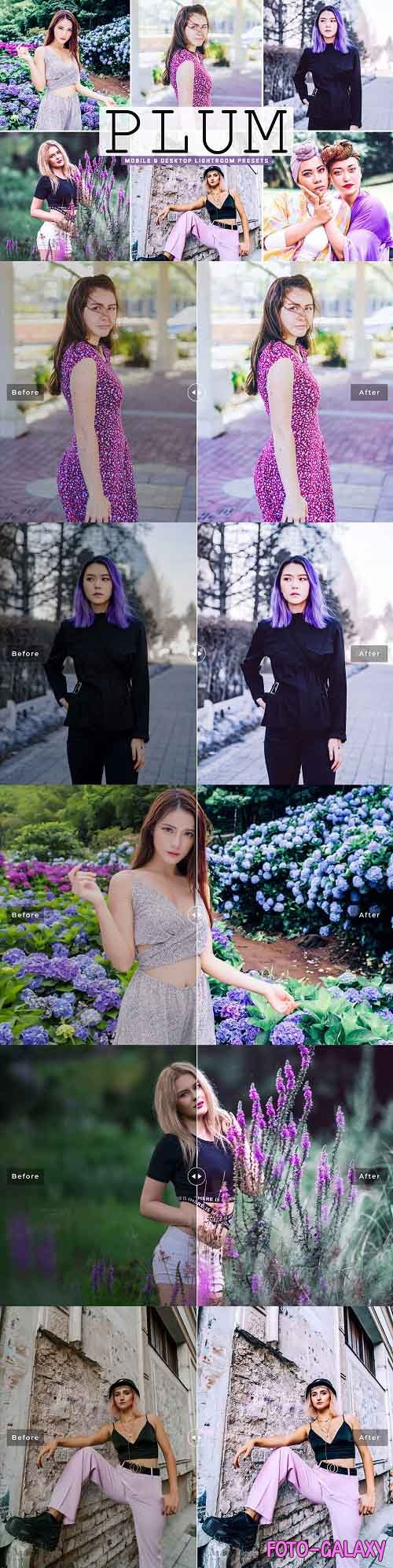 Plum Pro Lightroom Presets - 5437478 - Mobile & Desktop