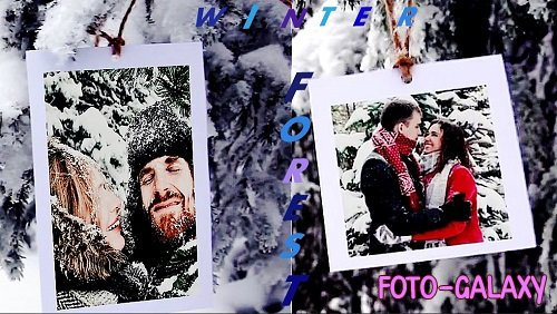 Photos In The Winter Forest 21 - Project for After Effects