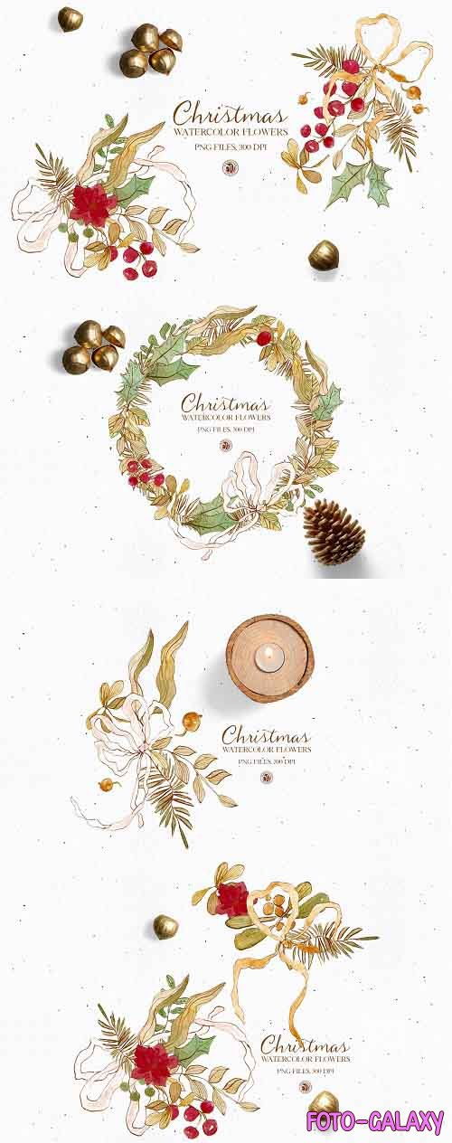 Christmas Flowers - watercolor set - 5542458